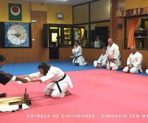ENTREGACINTOS4